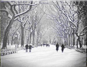 poet's walk canvas